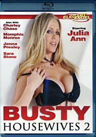 Busty Housewives 2 (121037.99)