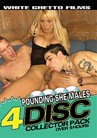 Pounding She Males Collector Pack (4 DVD Set) (2020) (185962.3)